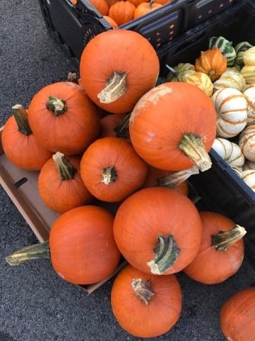 pumpkins2018
